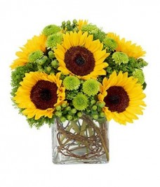 Sunflower-Surprise-Fresh-Flowers-for-your-loved-one