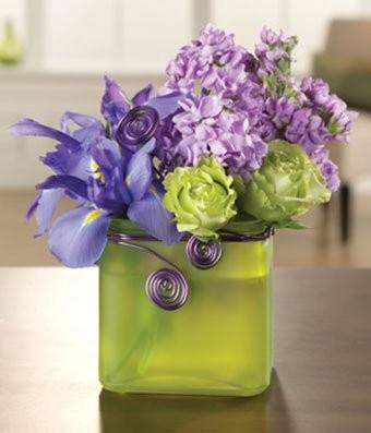 Iris Fantasy - Flowers