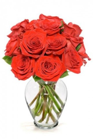 Red Roses Fresh flowers for your loved one