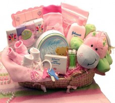 Our-Precious-Baby-New-Baby-Carrier-Gift-for-a-newborn