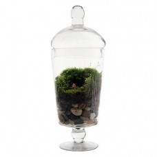 Grow-Old-With-You-Terrarium