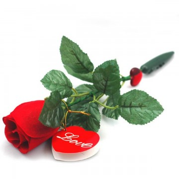Message Recorder and Rose Talking Flowers