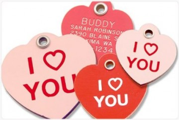 Pet ID Tag for Valentine
